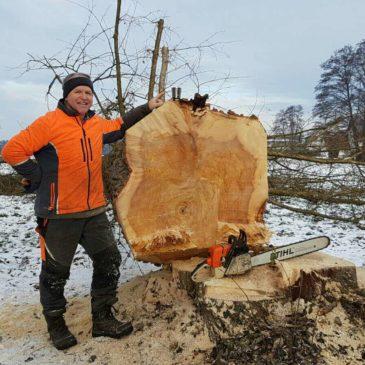 Beratung und Waldarbeit